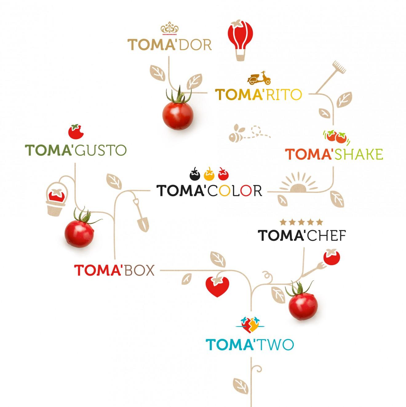Quatre Mains package design - toma, logo's, branding, subranges