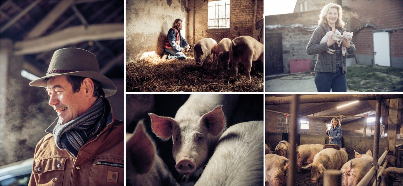 Quatre Mains package design - noyen, focus advertising, farm