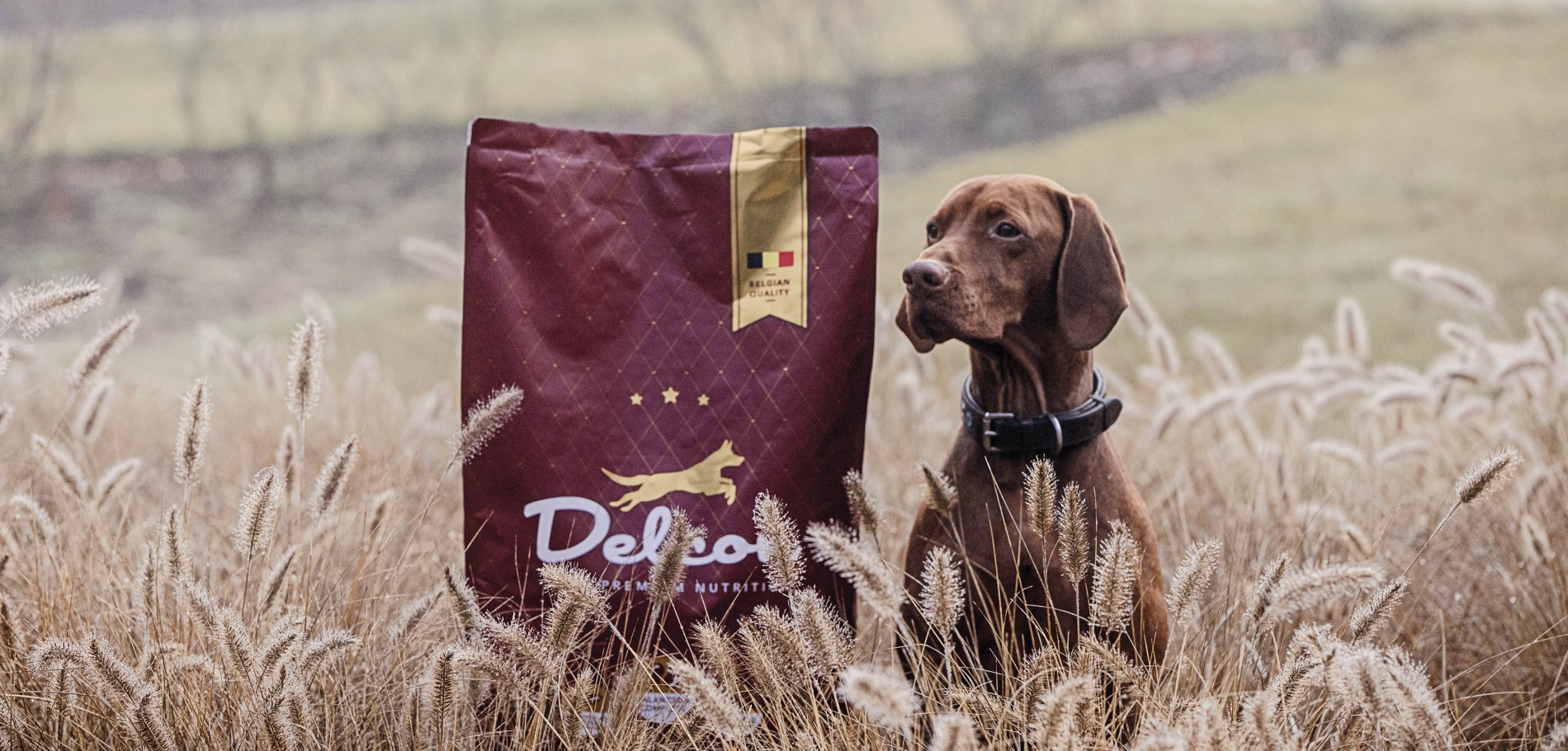 Quatre Mains package design - Package design delcon, dog feed